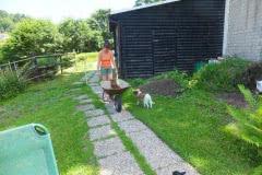 Hunde 166 Silken Windsprite Welpen