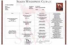 pedigree Silken Windsprite Welpen