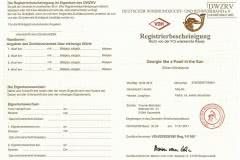 registrierbescheinigung Silken Windsprite Welpen