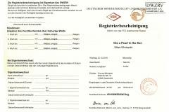 Registrierbescheinigung1 Silken Windsprite Welpen