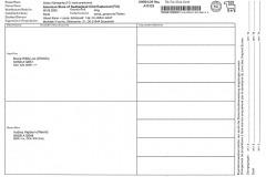 Registrierbescheinigung2 Silken Windsprite Welpen