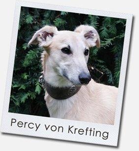 Silken Windsprite - Percy von Krefting