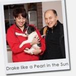 Drake like a Pearl in the Sun