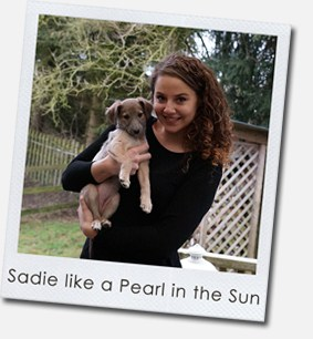 Sadie like a Pearl in the Sun