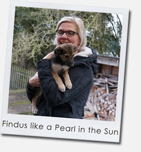 Findus like a Pearl in the Sun