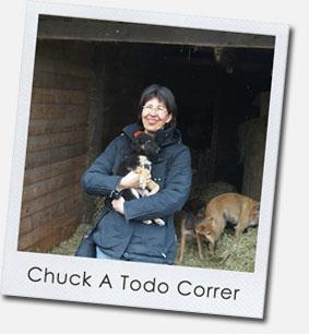 Chuck A Todo Correr