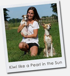Kiwi like a Pearl in the Sun