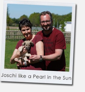 Joschi like a Pearl in the Sun