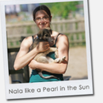 Nala like a Pearl in the Sun