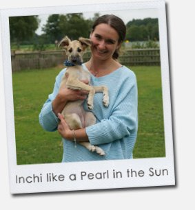 Inchi like a Pearl in the Sun