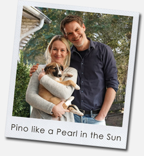 Pino like a Pearl in the Sun
