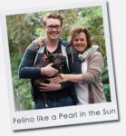 Felino like a Pearl in the Sun