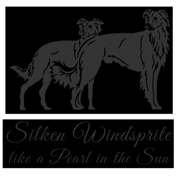 Silken Windsprite Anny & Darcy