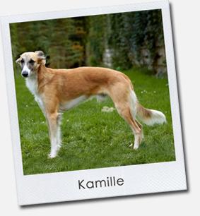 Kamille (Erill von Krefting)