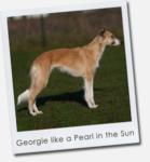 Georgie like a Pearl in the Sun
