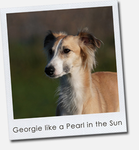 Georgie like a Pearl in the Sun