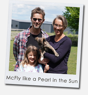 McFly like a Pearl in the Sun