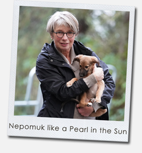 Nepomuk like a Pearl in the Sun