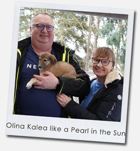 Olina Kalea like a Pearl in the Sun