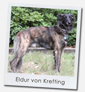 Eldur von Krefting