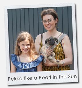 Pekka like a Pearl in the Sun