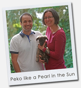 Peko like a Pearl in the Sun