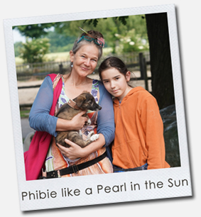 Phibie like a Pearl in the Sun