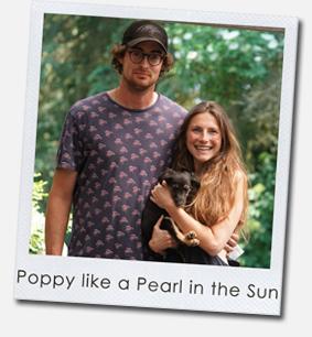 Poppy like a Pearl in the Sun